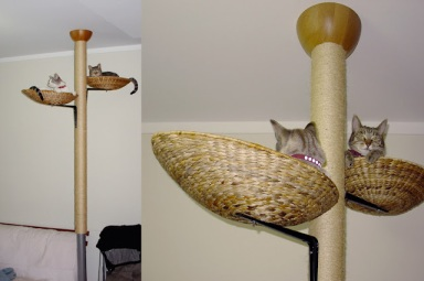 IKEA Hackers: pet furniture
